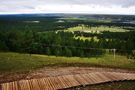 pinus sylvestris: Landscape nature view
