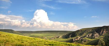 gully: grassland