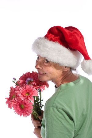 Mrs. Claus Stock Photo - 3616063