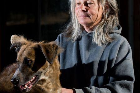 dog grooming Stock Photo - 3681482