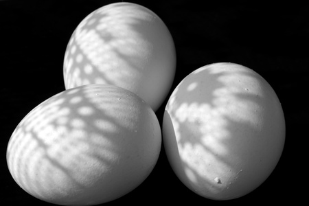 Some eggs for Easter holiday Stock Photo
