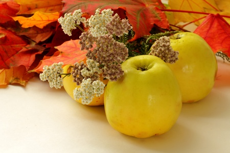 Apples, Autumn leaves and flowers Stock Photo
