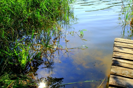 The sun is reflected in the waters of a pond