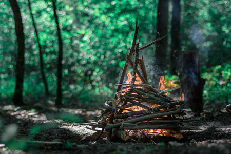 Flaming Campfire in the green forest Banco de Imagens