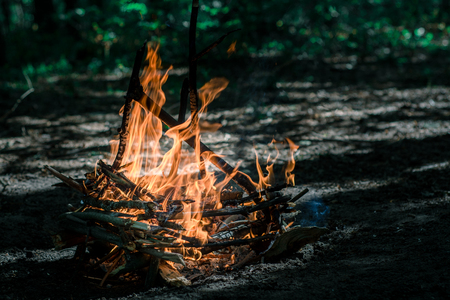 black and white photograph: Flaming Campfire in the green forest Stock Photo