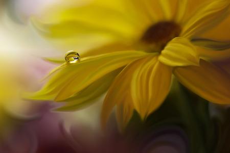水と抽象的なマクロ写真を削除します。デスクトップの功妙な背景は。パステル トーンで作られた花。静かな抽象のクローズ アップ写真。壁紙の印 写真素材