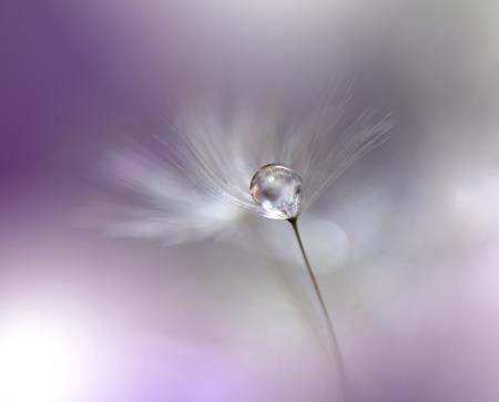 Beautiful Violet Nature Background.Macro Shot of Amazing Spring Magic Flowers.