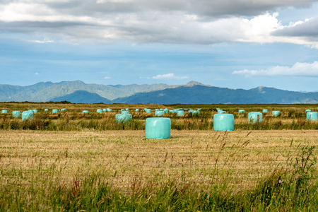 silage bales on a field with a mountain in the background Imagens