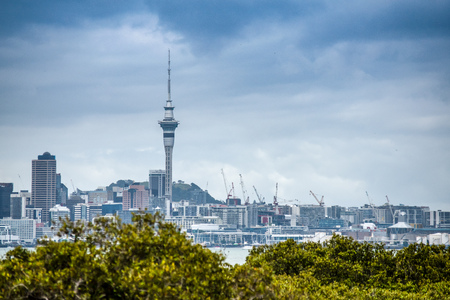 A beautiful photo of Auckland city with lots of cranes building appartment buildings