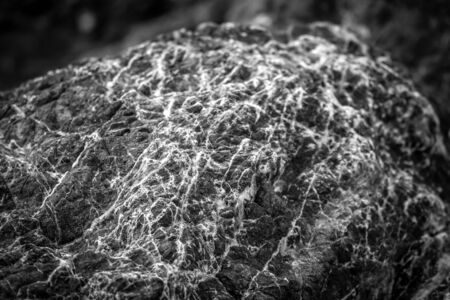 An interesting pattern on a stone in black and white