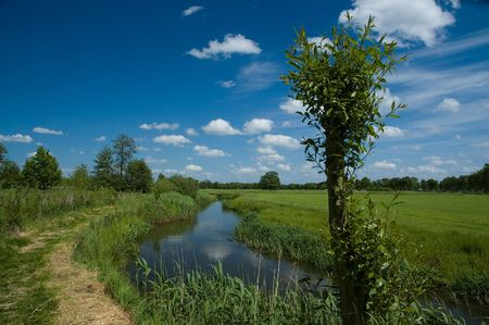 Dutch landscape in spring Stock Photo