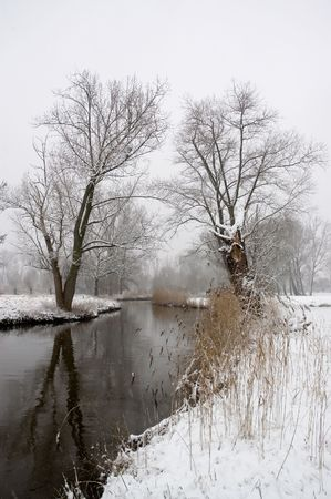 Winter landscape. Taken in Eindhoven, The Netherlands februari 2007.