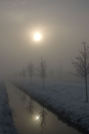 polder: Winter landscape of a dutch polder, 2008.