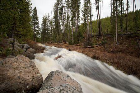 flowing river: R�o salvaje dentro de Yellowstone  Foto de archivo
