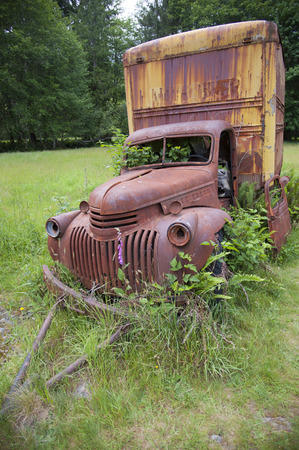 overgrown: Old rusty pickup truck overgrown with green plants Stock Photo