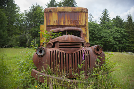 camioneta pick up: Old rusty pickup truck overgrown with green plants Foto de archivo