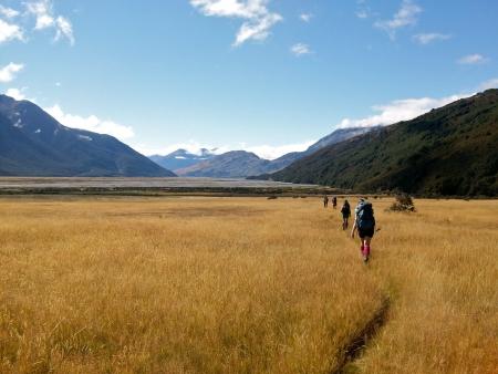草原のアーサーズ ・ パス国立公園、ニュージーランド南島を横断します。 写真素材