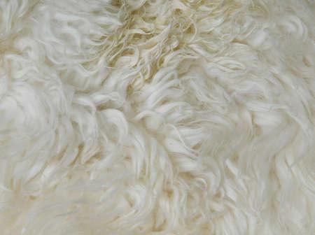 sheepskin: de cerca de piel de oveja de fondo para usos m�ltiples Foto de archivo