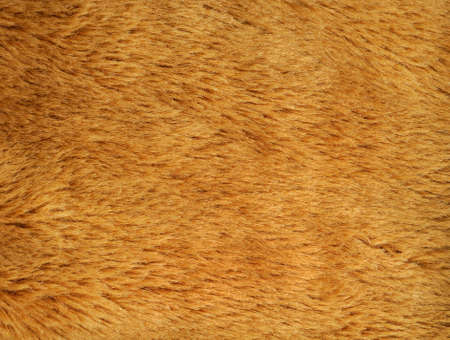anorak: synthetic fur texture background for multiple uses Stock Photo