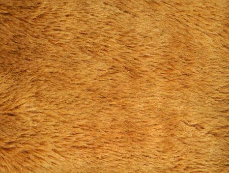 Anorak: synthetischen Fell Textur Hintergrund f�r verschiedene Zwecke verwendet werden