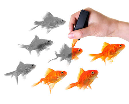 revitalizing: hand holding marker colorizing a group of seven goldfishes Stock Photo