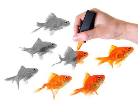creador: marcador de mano que colorear un grupo de siete peces rojos Foto de archivo