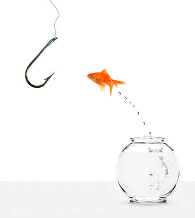 ignorant goldfish jumping out of bowl towards empty hook Stock Photo - 5744704