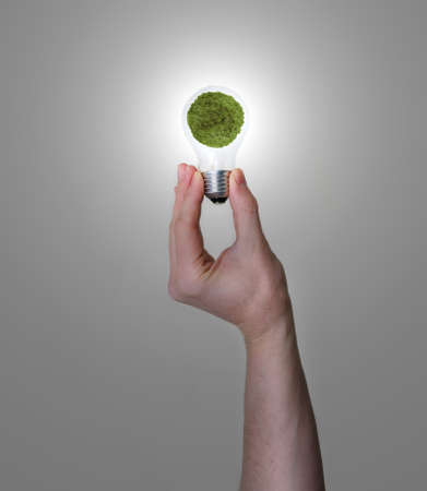 hand holding light bulb with green planet inside Stock Photo - 6827016