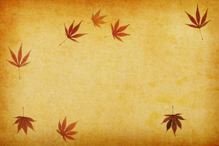 japanese fall foliage: abstract grunge autumn background for multiple uses