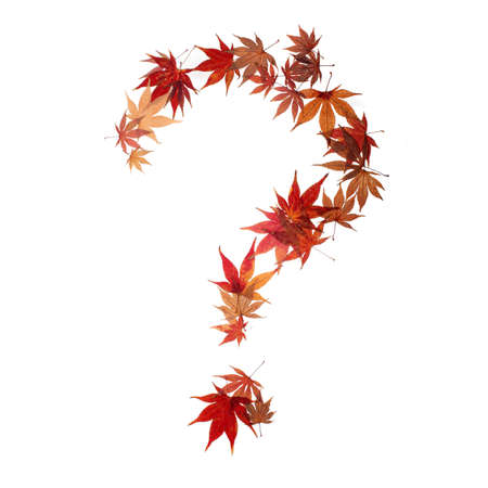 interrogation: question mark made by maple autumn leaves isolated on white Stock Photo