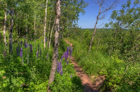 Hawks Ridge is a park in Duluth, Minnesota with view of the city and Lake Superior