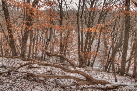 Newton Hills는 Sioux Falls 근처의 미국 사우스 다코타 주에있는 주립 공원입니다. 스톡 콘텐츠 - 102256608