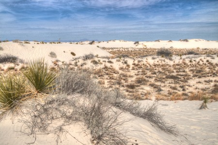 White Sands National Monument is Located in New Mexico and is One of the World's Gypsum Sand Collections Banque d'images - 101150756