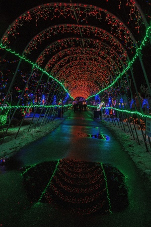 Christmas Lights in Duluth, Minnesota during the Winter Season on Lake Superior Shores 스톡 콘텐츠 - 102944333