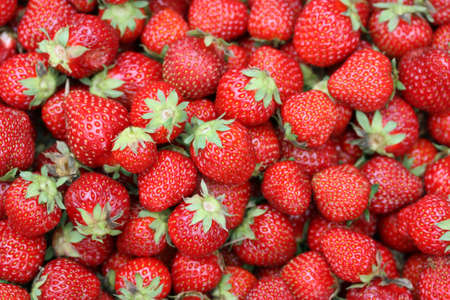 많은 딸기