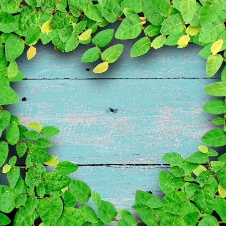 Ivy fixing climbing tree make heart shape on grunge wood background on green color. Love concept. photo