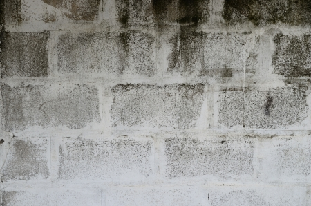 Old and dirty concrete wall. Stock Photo - 19467096