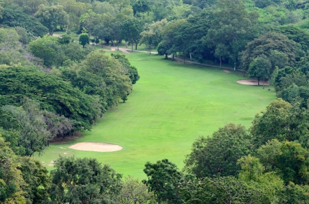 arial views: Golf field with trees from arial view. Stock Photo