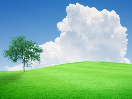early summer: Beautiful green field with blue sky and white cloud and tree Stock Photo