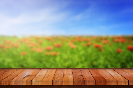 flower garden: Wood floor panel with blur effect of natural flower garden and blue sky. Abstract background for your text, design, or copyspace.
