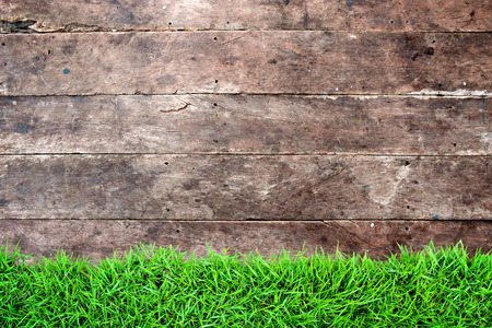 wood grass: Dark grunge vintage wood wall panel background with green grass in front of. Empty and blank space for your text, copyspace or design. Stock Photo