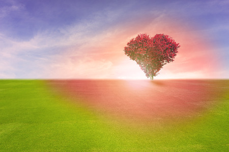 marrying: Power of love, red color tree in heart shape symbol,  representing romantic love spreading red color to grass field and blue sky, Valentines Day holiday concept.