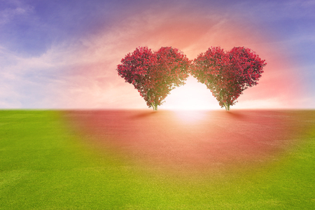 romantic love: Power of couple lover, two red color tree in heart shape symbol,  representing romantic love spreading red color to grass field and blue sky, Valentines Day holiday concept. Stock Photo