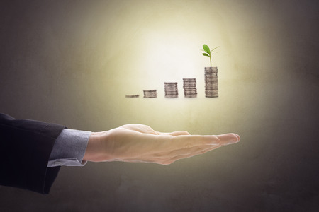 statics: Business mans hand make palm up with growing up money coins and sprout of plant, bright glow light for your text or design. Business concept in growth and success. Stock Photo
