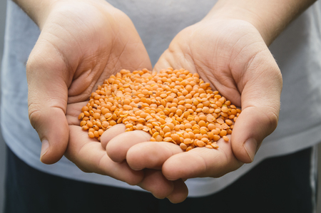 un healthy: Young man with a handful of lentils Stock Photo