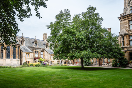 campus tour: CAMBRIDGE, UK - AUGUST 11, 2015:  Court with big trees in the Gonville & Caius College in the University of Cambridge. Cambridge is a university city and one of the top five universities in the world.