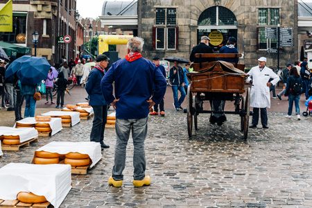 bidding: Gouda, Netherlands - August 4, 2016: Gouda Cheese Market. It remains a spectacle at the heart of Holland's cheese industry, with its rituals and Dutch traditions now a must-see attraction.