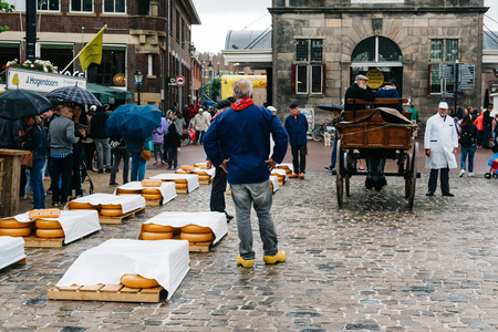 famous industries: Gouda, Netherlands - August 4, 2016: Gouda Cheese Market. It remains a spectacle at the heart of Holland's cheese industry, with its rituals and Dutch traditions now a must-see attraction.