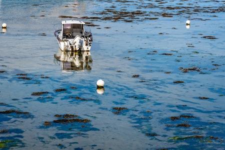 Barco de motor fuera de borda blanco de anclaje en el océano