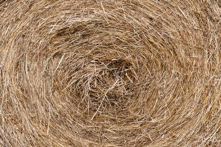 Close up of hay bale after harvest